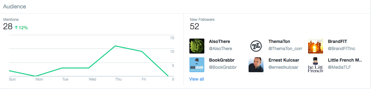 Twitter Dashboard Account Audience